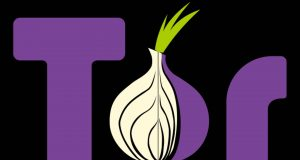 Tor meilleur navigateur Darknet