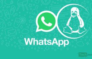 whatsApp-pour-Linux